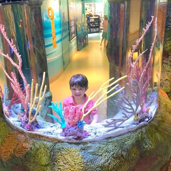 Cabarrus County NC with Kids - Sea Life Aquarium Exhibit