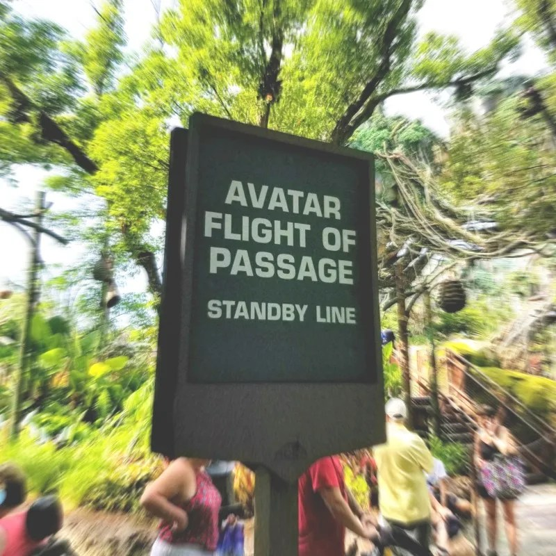 How to Ride Avatar Flight of Passage Without the Wait - Trips With Tykes