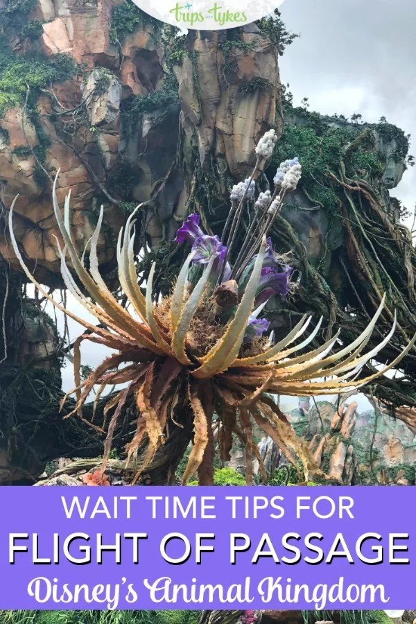 Expert tips and tricks for minimizing wait times for Avatar Flight of Passage in Pandora in Animal Kingdom at Walt Disney World. Advanced Fastpass+ strategies plus what options might NOT work to dodge long lines. #disneyworld #pandora #animalkingdom #flightofpassage