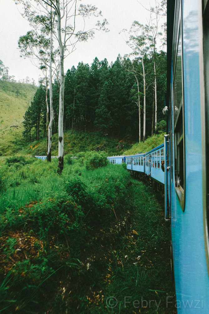 train-ride-in-sri-lanka-by-febry-fawzi-7