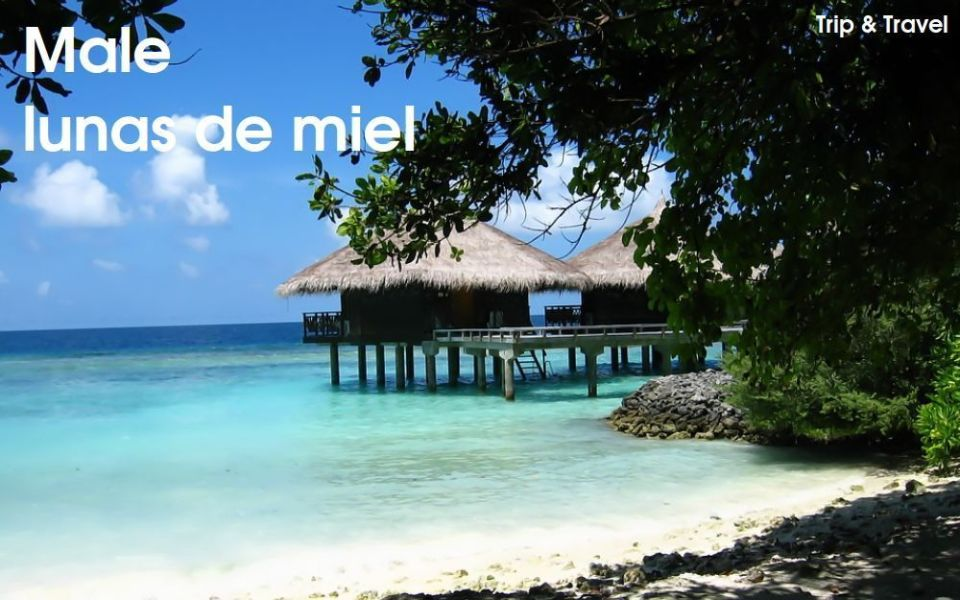 Male, Islas Maldivas, Maldivian Islands, hoteles, playas, surf, buceo, relax, viajes, vuelos, lunas de miel, barato, económico, asequible, Asia, vacaciones, Trip and Travel, Hulhulé, Hulhumalé, esnórquel, hidroaviones, Villingili, Mulee-aage, centro islámico, mercado de pescado, rihaakuru, garudia, kuli boakiba, rosji, hedhikaa, masroshi, huni hakoro folhi