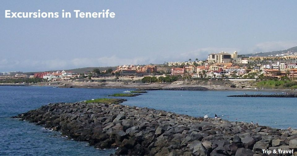 Excursions in Tenerife, hotels, holidays, restaurants, car renting, Canary Islands, Spain, Atlantic Ocean, boat trips, dolphin shows, whales watching, España, Islas Canarias