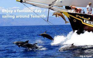 Playa de las Américas Boat Charter, Teneriffa, reservations, tickets, restaurants, hotels, Canary Islands, Spain, Tenerife, Puerto de la Cruz, Puerto Colón, Los Gigantes