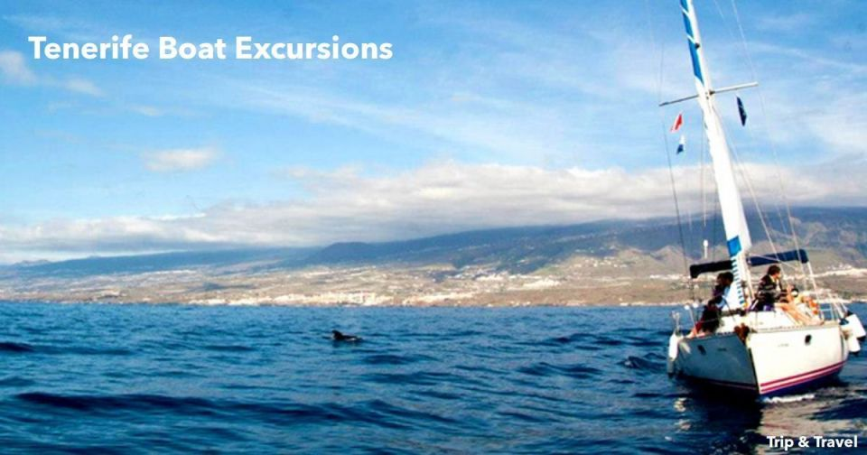 Tenerife Boat Excursions, zealot boats, jetski, tickets, hotels, reservations, holidays, Canary Islands, Spain, snorkeling, scuba diving, restaurants, fishing, whales watching