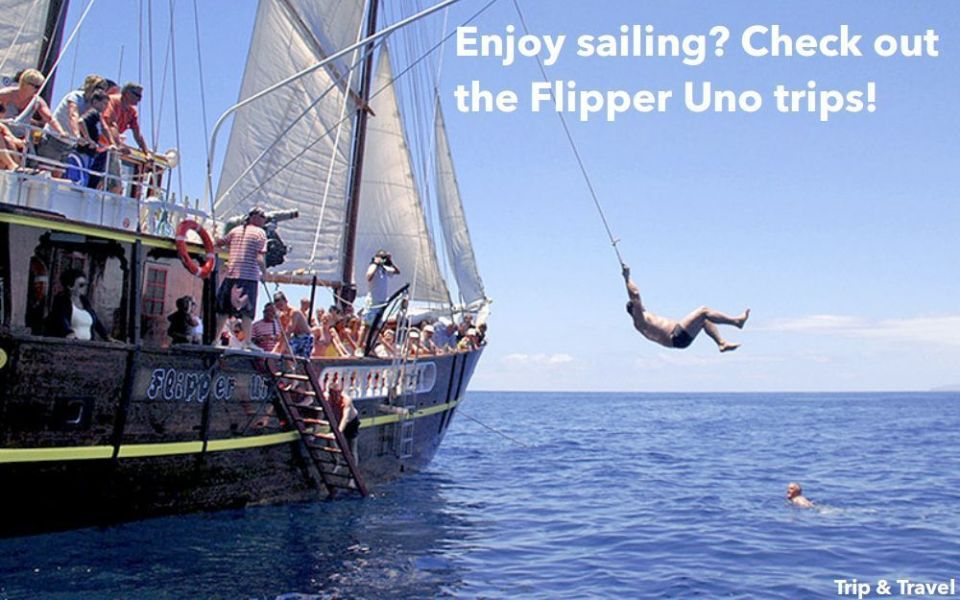 Tenerife Excursions Los Gigantes, boat trips, dolphins watching, whales watching, Canary Islands, Spain, tickets, reservations, hotels, quads, Flipper Uno, restaurants