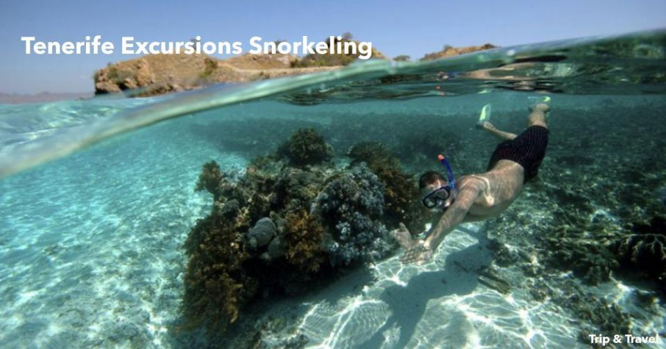 Tenerife Excursions Snorkeling, Canary Islands, Spain, reservations, hotels, tickets, restaurants, whales watching, zealot boats, parascending, fishing, jetski, scuba diving