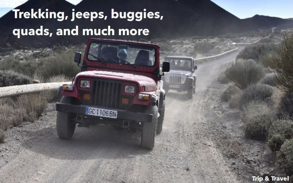 Tenerife Holiday Excursions, whales watching, Canary Islands, Spain, hotels, tickets, reservations, restaurants, trekking, quads, buggies, jeeps, scuba diving, fishing