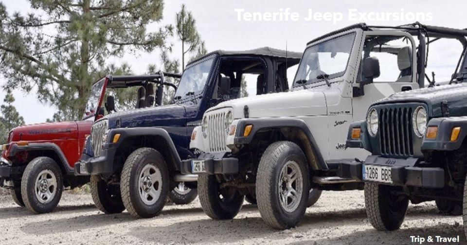Tenerife Jeep Excursions, Canary Islands, Spain, España, Islas Canarias, quads, buggys, whales watching, trekking, hotels, tickets, reservations, restaurants, holidays