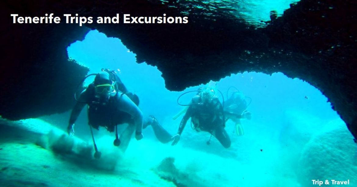 Tenerife Trips and Excursions, tickets, reservations, hotels, Canary Islands, Spain, car renting, trekking, quads, fishing, dolphins show, whales watching, paella cooking show