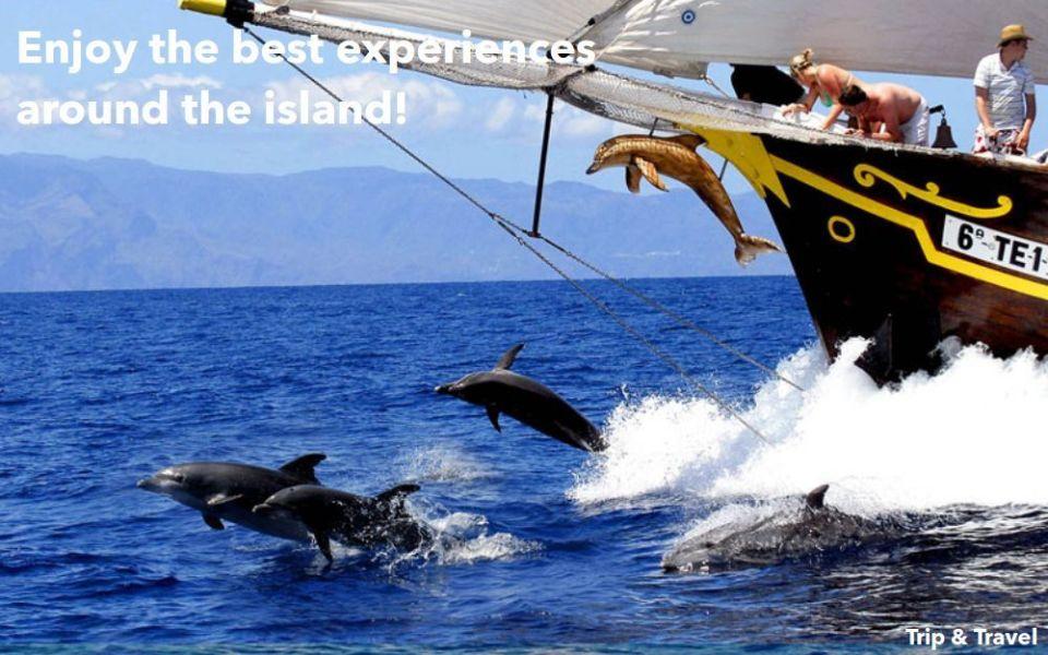 Tenerife Excursions Deals, trips, tours, tickets, cheap, events, reservations, hotels, restaurants, Playa de las Américas, Puerto Colón, catamaran, boat, yacht, Canary Islands