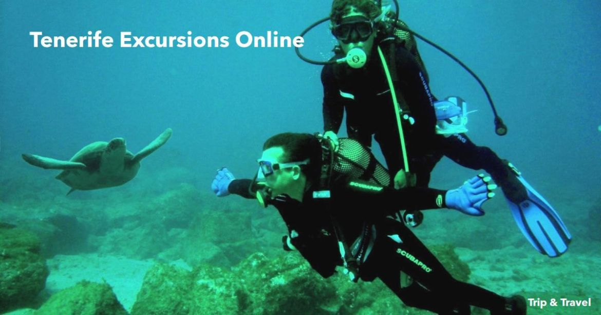 Tenerife Excursions Online, tickets, tours, trips, cheap, events, hotels, reservations, restaurants, dolphins show, whales watching, jeeps, quads, scuba diving, snorkeling