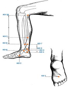 Форма тайцзи Као — удар плечом. Из цикла: Секретные техники Тайцзи цюань