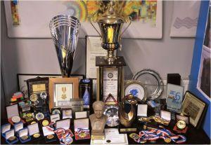 Sve Vikove nagrade