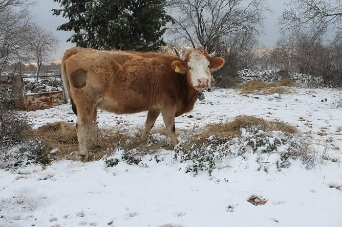 Snijeg ponegdje i u Zagori, u nedjelju nam stiže novi val zahlađenja