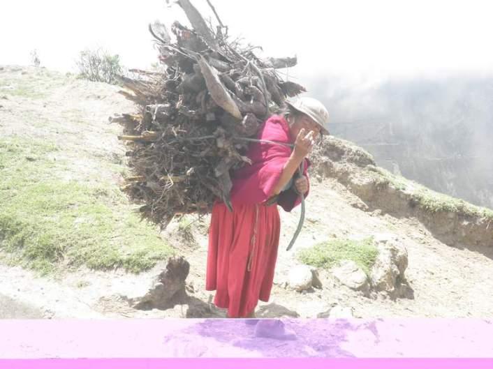 Surovi život na Andama