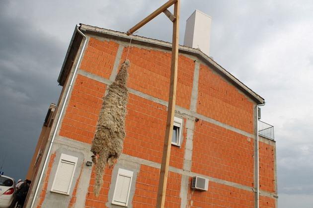 Prosvjednici su posdigli vješala i na njih objesili kožu ovce, aludirajući na maskotu Tele 2 kampanje, ovce Gregora i Janka (Foto: H. Pavić)