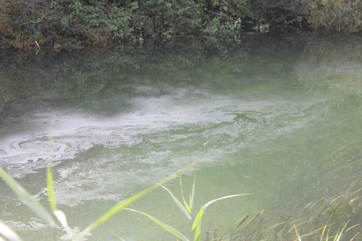 Kiše počistile kninsku lagunu mazuta (Foto H. Pavić) (5)