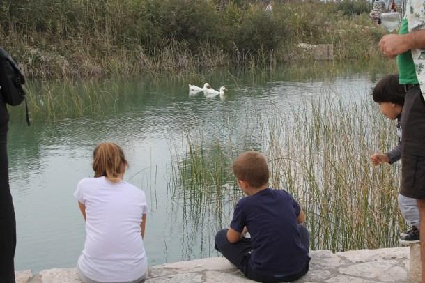 Vransko jezero (Foto H. Pavić) (8)