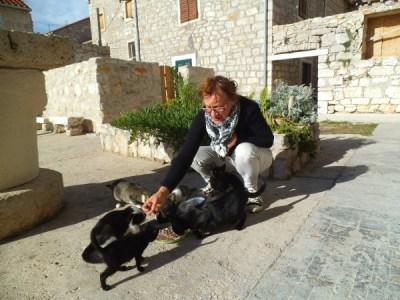 Svjetlana Jurlin Livić okružena seoskim mačkama