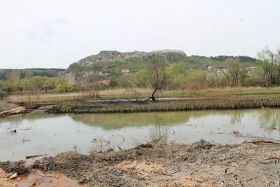 Mazut i fekalije više ne plove Krkom, već 'bujna močvarna vegetacija zadržava onečišćenja'
