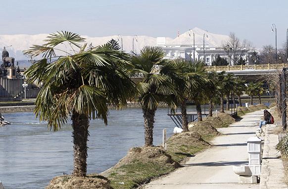 Skopske palme
