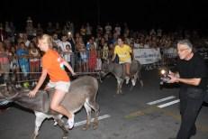 10. međunarodna trka tovarov - 10. međunarodna utrka magaraca (37)