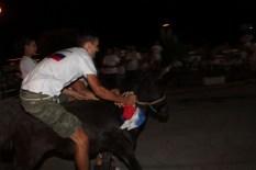 10. međunarodna trka tovarov - 10. međunarodna utrka magaraca (61)