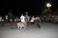 10. međunarodna trka tovarov - 10. međunarodna utrka magaraca (62)