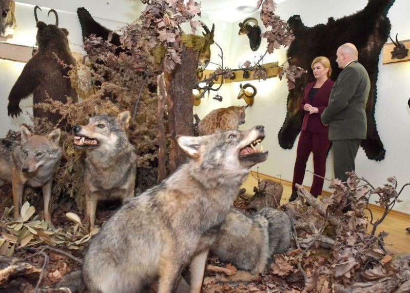 U prvom planu mrtvi vukovi (foto Ured predsjednice RH)