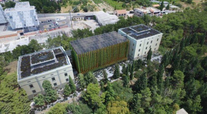 Palacin kao središte visokog obrazovanja u Šibeniku