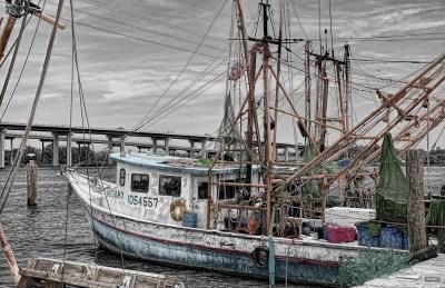 Dogovorena trogodišnja zabrana ribolova u Jabučkoj kotlini