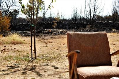 Požar je ušao u dvorište M. Štrpca (foto TRIS/G. Šimac)