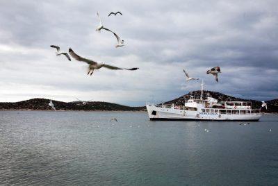Ilustracija: brod Tijat nadomak otoka Prvića (foto Facebook Udruga Otok)