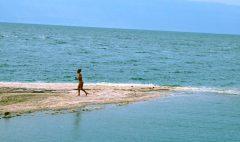 Kupačica na rtu od soli (foto J. Gracin)