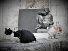 Dvije mace i statua 'Studijev histrion' (foto TRIS/G. Šimac)