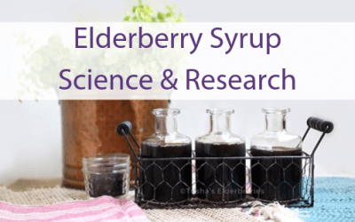 The Scientific Research on Elderberry Syrup