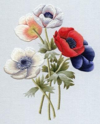Redoute's Anemones
