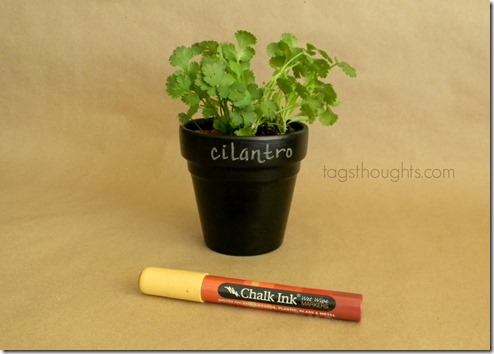 A Chalkboard Terracotta Pot is a simple handmade gift that can share loving messages for a special someone in your life. A versatile gift for loved ones. TrishSutton.com