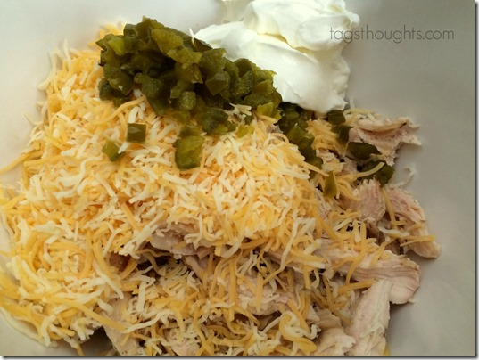Baja Chicken Enchiladas Recipe by TagsThoughts.com
