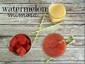 Watermelon Mimosa by trishsutton.com