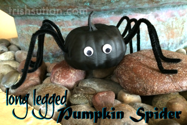 Long Legged Pumpkin Spider | Cute Halloween Decor. A spider that is too cute to fear and it is made from a mini pumpkin! Creepy fun by TrishSutton.com.