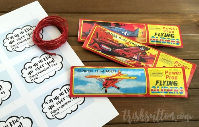 Airplane Valentine With Free Printable; Non Candy Kids Valentine by TrishSutton.com