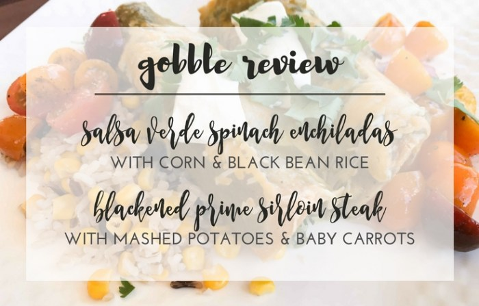 Gobble Meal Subscription Box Review, TrishSutton.com