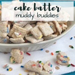 Crunchy, sweet & colorful! Chex cereal covered in vanilla, funfetti cake mix & sprinkles come together to create a party favorite. Cake Batter Muddy Buddies; TrishSutton.com