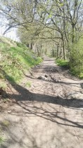 Meanwood Park trail