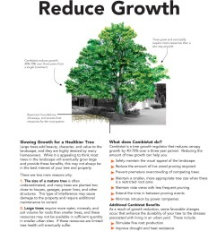 growth regulators reduce growth reducegrowth page 1 [ 1500 x 1941 Pixel ]