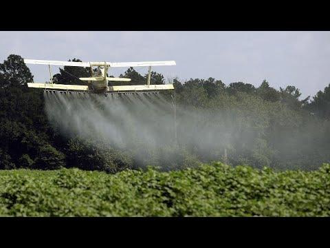 Svizzera spaccata in due sull'uso dei pesticidi sintetici