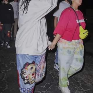 Dopo essersi dichiarata pansessuale, Demi Lovato è stata vista mano nella mano con una mis…