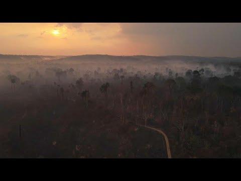 Gli europarlamentari scrivono a Bolsonaro: stop alla violenza contro i popoli indigeni
