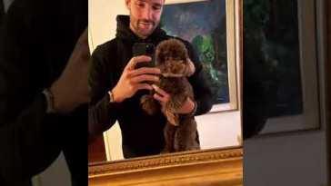 Andrea Zenga mostra il suo cane Leone arrivato ad Osimo #zengavò #shorts